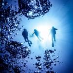 Sea_Sanctuaries