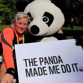 panda-made-me-do-it