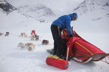 tore-sled