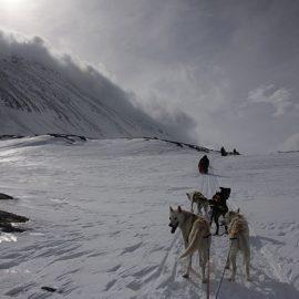 Tri-Polar Exped