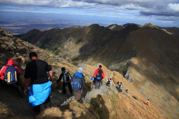 bear-trek-transylvania