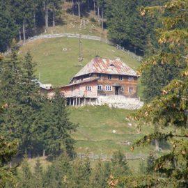 Cabana Curmatura
