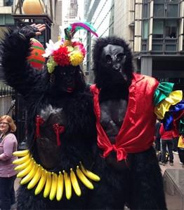 gorilla-run-regina