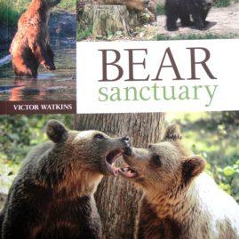 Bear Sanctuary by Victor Watkins