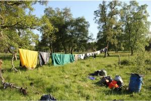 drying-equipment