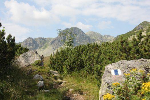 retezat-national-park