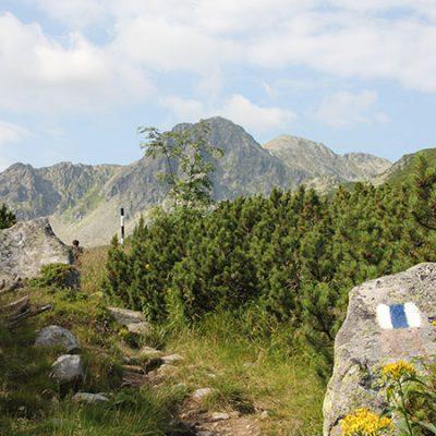 retezat-trail